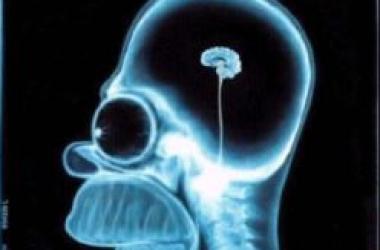 Здоровое питание уничтожает интеллект