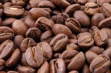 Кофе против целлюлита: рецепт от Холли Берри