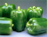 Болгарский перец лучше молодильного яблока: 5 фактов о сладком перце заставят тебя есть его ежедневно