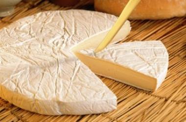 Сыр как перекус: полезные свойства продукта