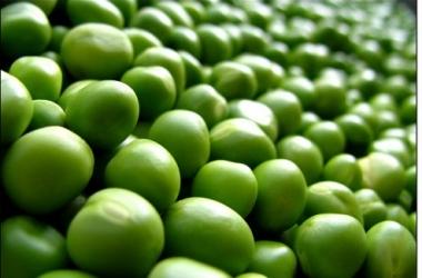 Аллергия от ГМО