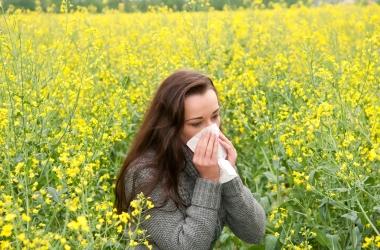 Лето: сезонные болезни