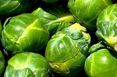 Брюссельская капуста: полезные свойства