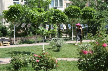 27-28 июня в Сквере Небесной сотни пройдет выставка Валерии Тарасенко