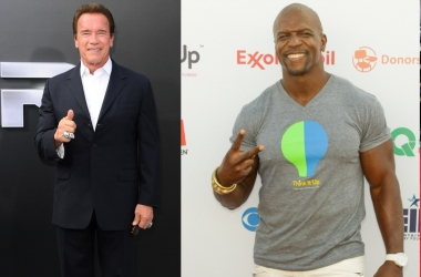 Арнольд Шварценеггер, Дуэйн Джонсон и другие актеры в рейтинге самых мускулистых знаменитостей (фото)