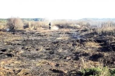 Смог в Киеве: в области продолжают тушить торфяники