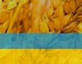 Куда пойти в Киеве на День защитника Украины - 14 октября: выставка военной техники, выступления фольклорных коллективов и конный марш