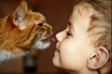 Домашнее животное для ребенка: 8 причин купить
