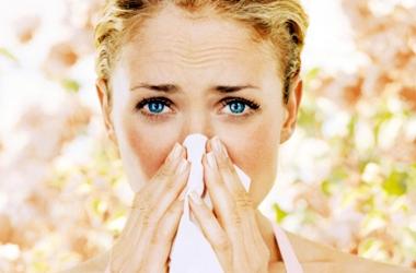 Аллергия на пыльцу: причины и способы борьбы