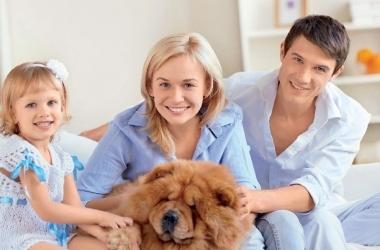ТОП-5 родительских ошибок в воспитании детей
