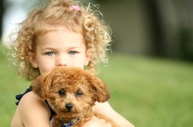 Собака для ребенка: какая (фото)