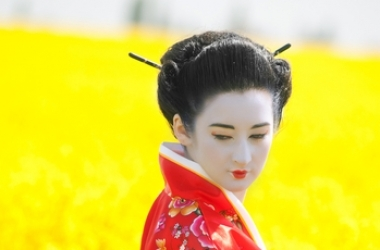 Сексуальные секреты гейши