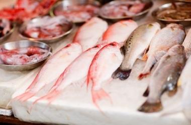 Кушай рыбу - оргазм гарантирован