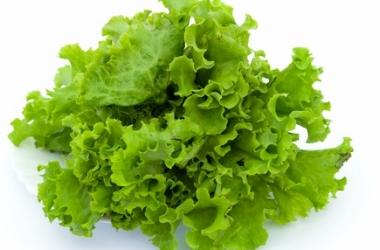 Вкусные салаты без майонеза: 4 рецепта