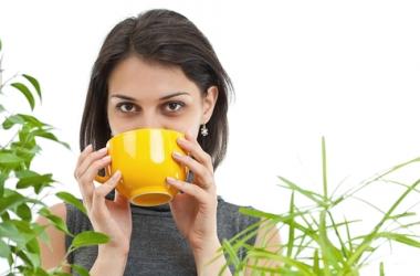 Календарь здоровья на 17 апреля: чистим ЖКТ и пьем травяные чаи