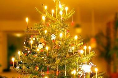 Как правильно нарядить елку, чтобы желание сбылось: совет Ларисы Ренар