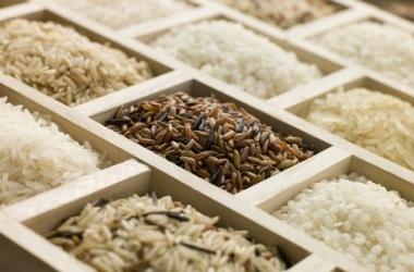 Топ-10 сортов риса