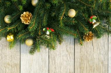 Новый год 2013: как украсить елку? (ФОТО)