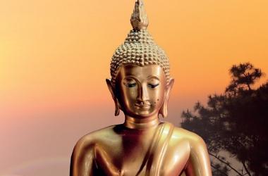 Чего ожидать от 2013: прогноз на год Змеи от астролога