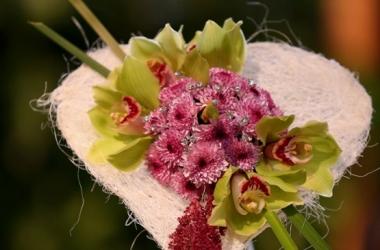 Садоводческая выставка в Мельбурне: смотри необычные композиции (фото)