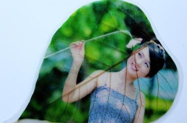 На листьях деревьев в Китае печатают картины и фото