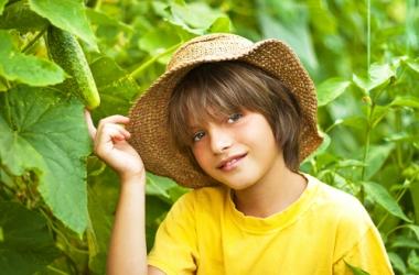 5 способов приучить ребенка есть овощи