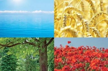 Как цвет влияет на наше здоровье?