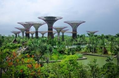 Конкурс от ТАS: главный приз -  поездка на двоих в Сингапур!