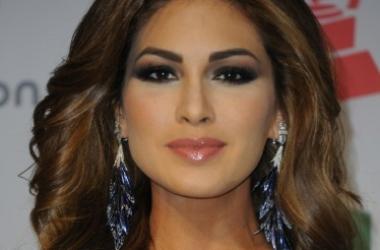 Новогодние наряды 2014: стильные образы от Мисс Вселенная (фото)