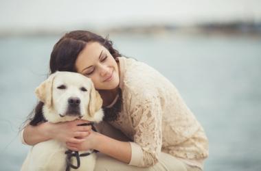Бородянский приют для бездомных собак: срочно нужна твоя помощь!