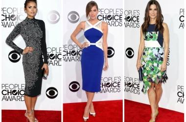 People's Choice Awards 2014: самые яркие и стильные наряды звезд (фото)