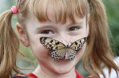 Дети дрессировали бабочек: умилительный репортаж (фото)