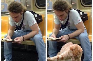 Смешнющее открытие века: почему мужчины занимают много места в метро (фото)