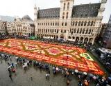 Гигантский ковер из живых цветов создали в Брюсселе (фото)