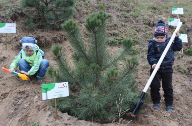 Компания Canon провела экологическую акцию
