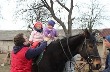 Где в Киеве покатать ребенка на лошадях: проверено ведущим СТБ Владимиром Бойко