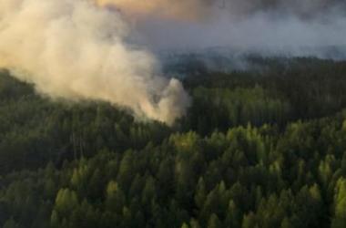 Ветер с Чернобыля 30 апреля доберется до Киева: изменится ли уровень радиации?