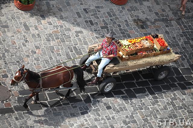 Николай Тищенко на коне фото